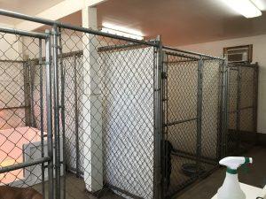 Sylvia indoor kennel